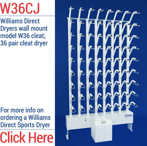Williams Direct Dryer - W36CJ